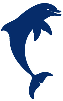 Dolphin_Splash_logo
